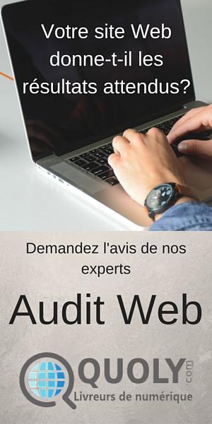 Demandez un audit Web Quoly